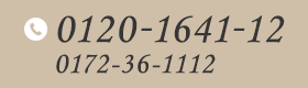 0120-1641-12 0172-36-1112